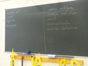 Turlavas pamatskolā lekcija par atkarībām